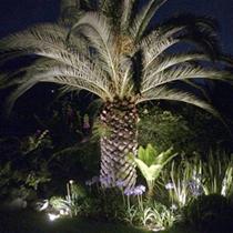 Lumiproiluminacion De Exterior En Monterreyfocos Para Jardin - Iluminacion-para-jardin